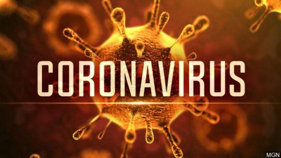 Image of a coronavirus particle
