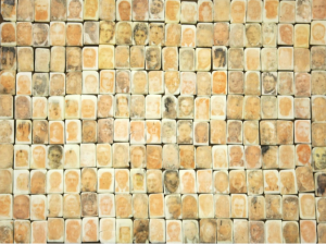 """Examples of """"Purgatory"""", 292 portraits of offenders created on slivers of prison-issued bars of soap using transfer from newspapers while in a 23 hour maximum security lock down for one year awaiting sentencing. Smuggled out in the mail, hidden inside used decks of playing cards."""