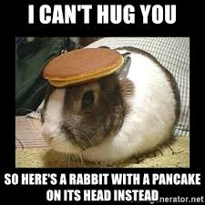 I can't hug you so here's a rabbit with a pancake on its head instead meme
