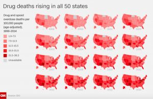 Drug death rates in all 50 states