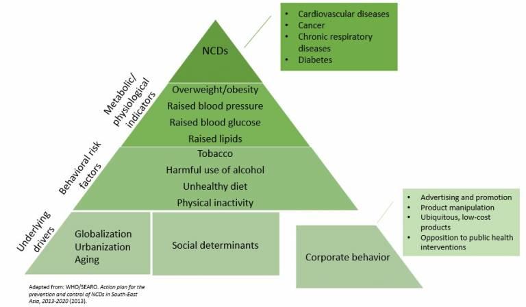 ncd pyramid