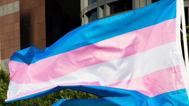 Photo of the trans flag